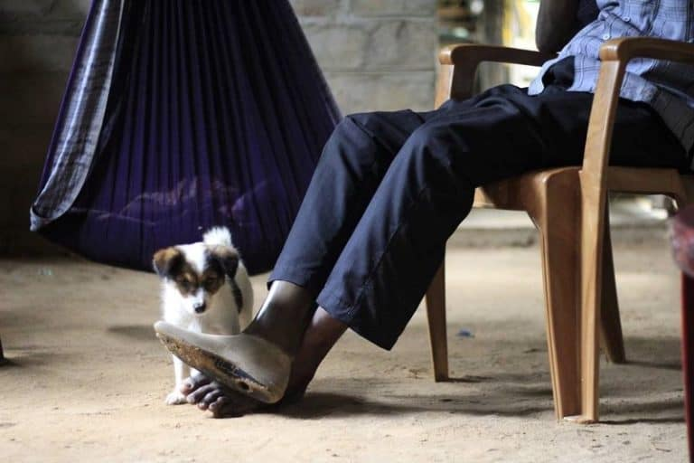 A man sits in a chair while a small dog looks at his prosthetic leg.