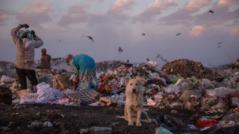 A dog sits in a landfill while some people look through the rubbish.