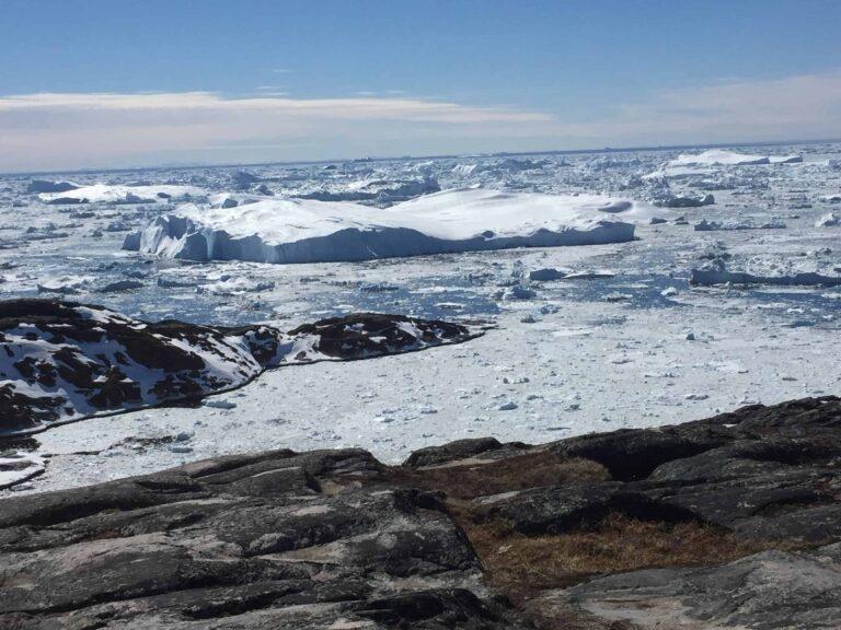 Icebergs off a rocky shore.