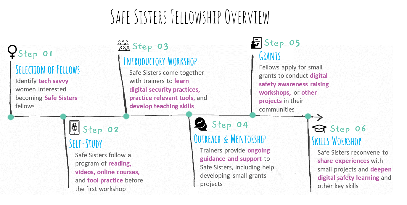 Graphic showing Safe Sisters Fellowship Breakdown - Selection of Fellows, introductory workshop, grants, self-study, outreach and mentorship and skills workshop