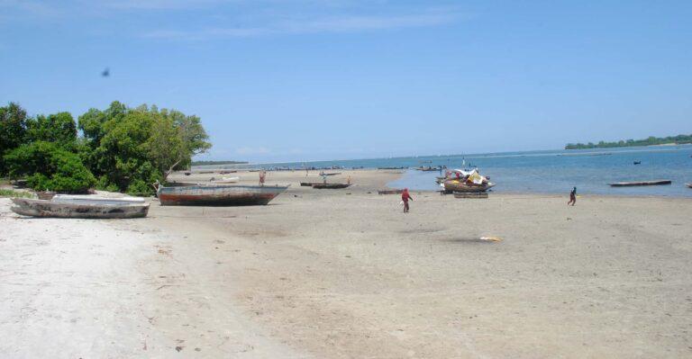 Boats on a beach.
