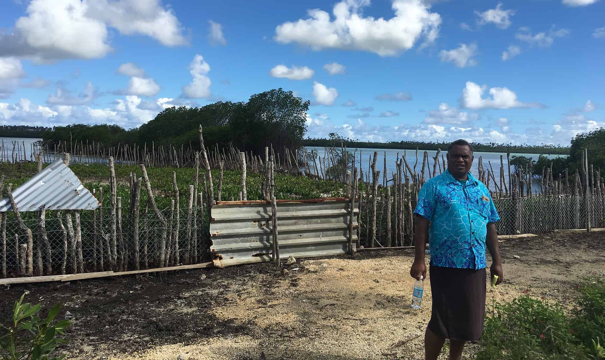 A man stands in front of mangroves trees.