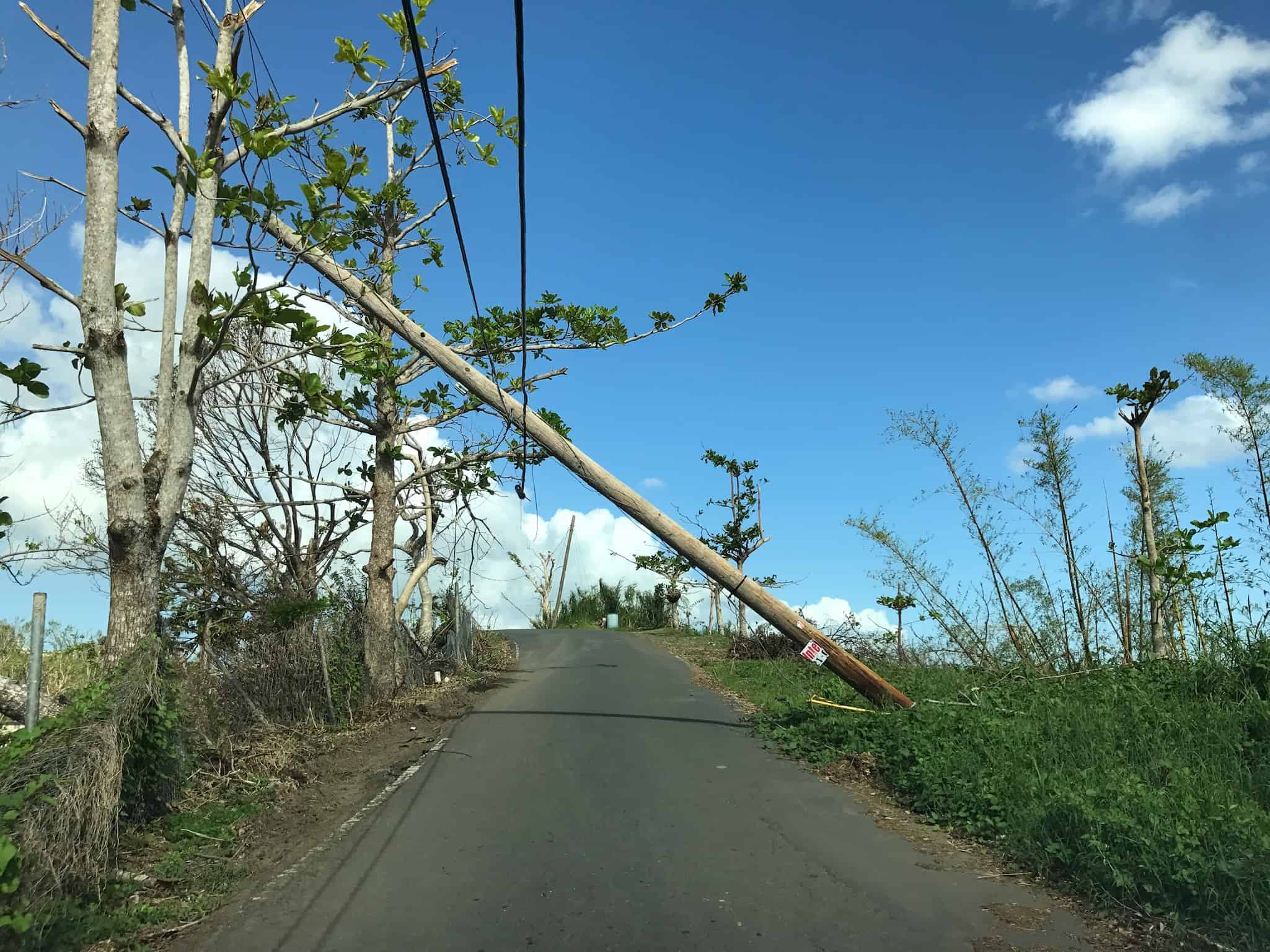 A utility pole fell over a road