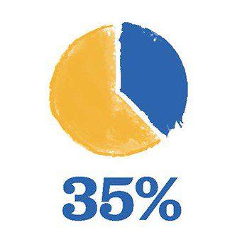 pie chart - 35%