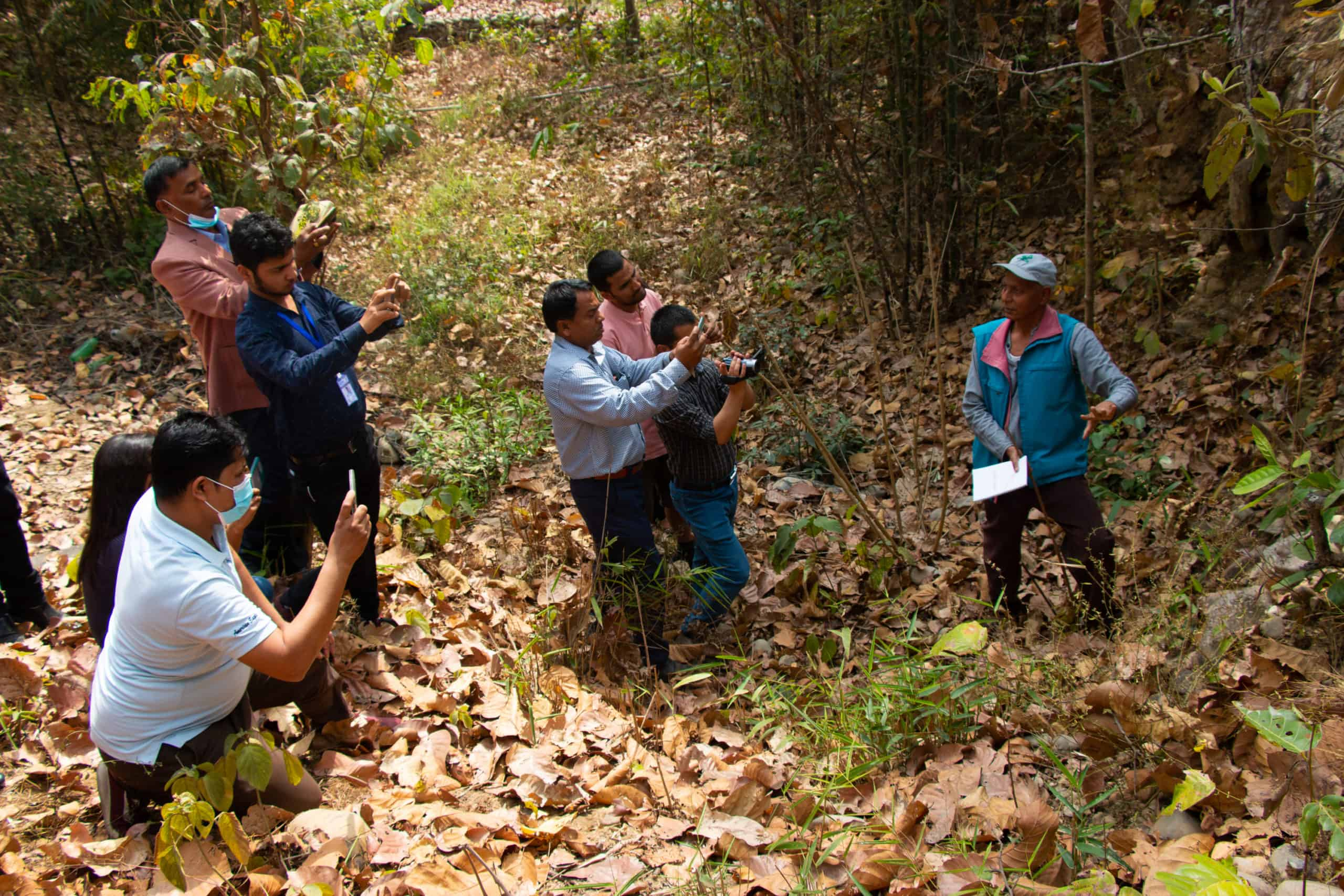 In some woods, a man speaks while a group of people point their smart phones at him.