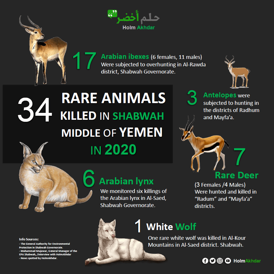 Poster showing 5 types of rare animals that are hunted.