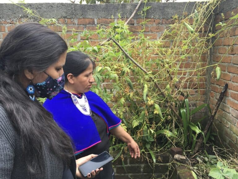 Two women look at some plants.