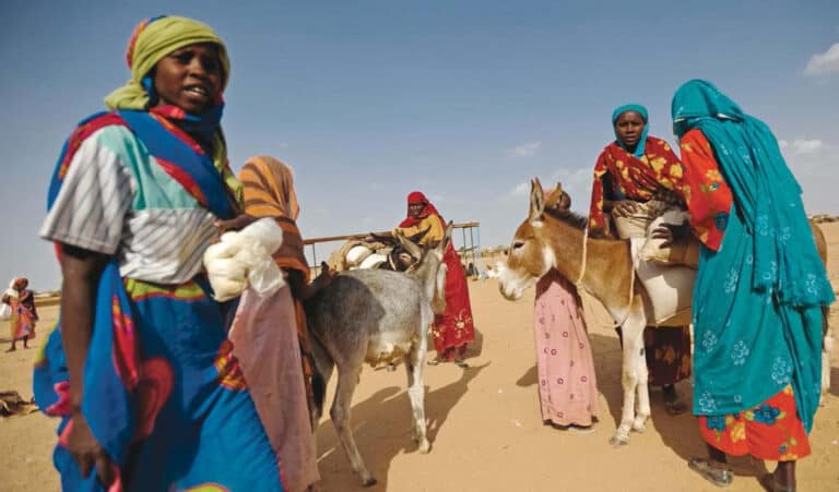 Some women and their livestock in the desert.