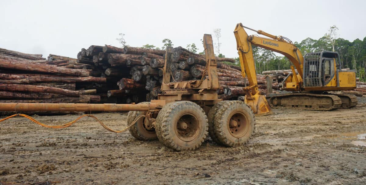 A tractor hauls logs on a trailer.