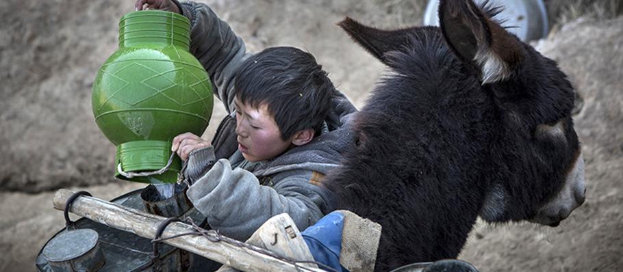 5-COP21-China-boy-donkeycmsh1.jpg