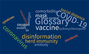 Word cloud with glossary terms