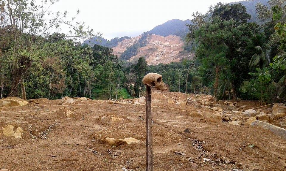 A skull sits on a post stuck in the middle of a landslide