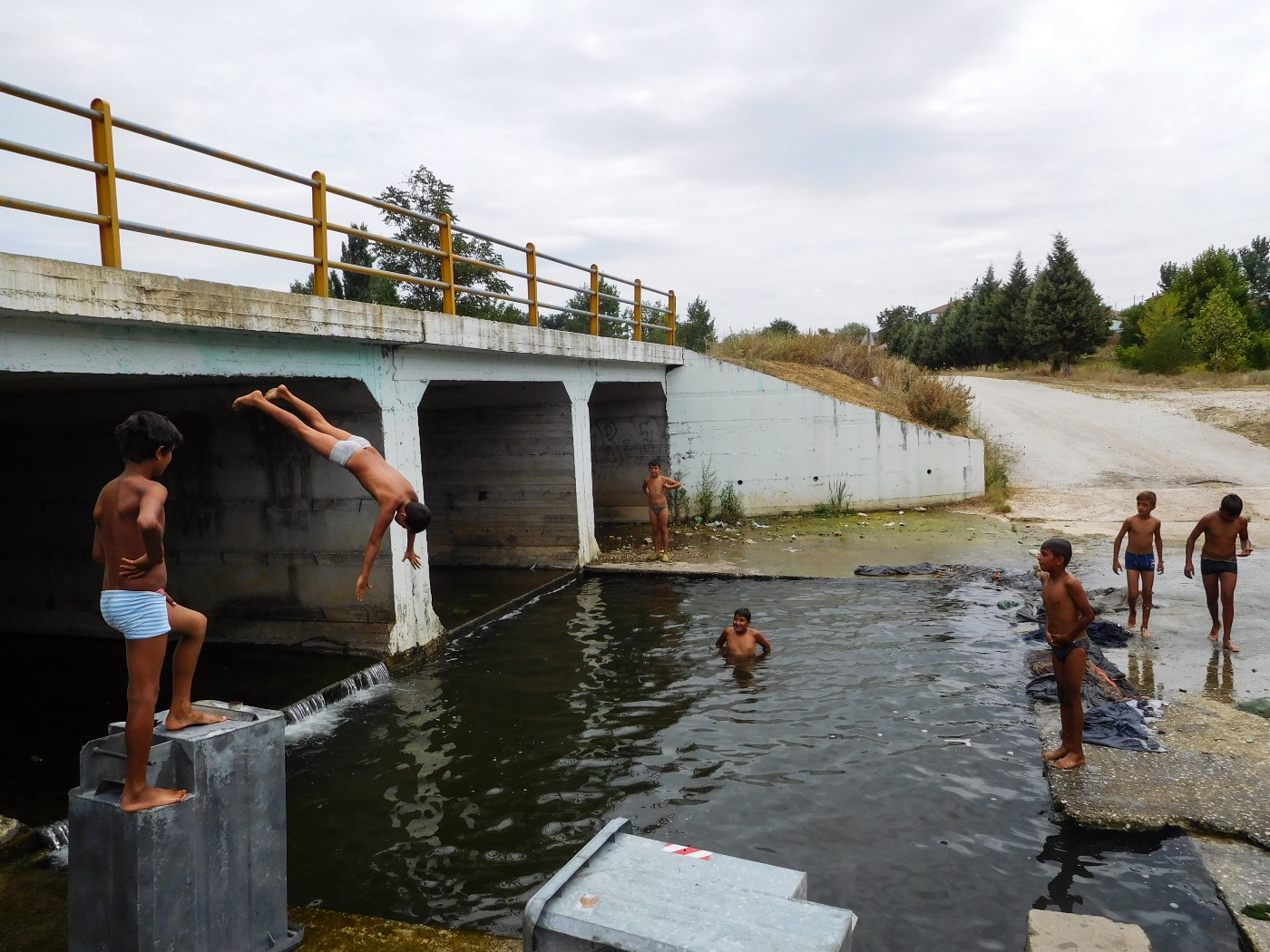 A group of boys swim and dive into the water by a bridge
