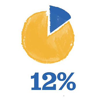 Pie chart showing 12%