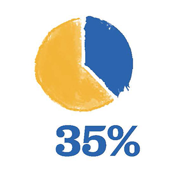 Pie chart showing 35%