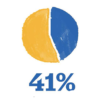 Pie chart showing 41%