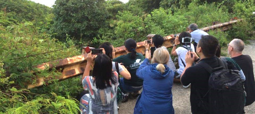 A group of journalists stand and kneel on a deck in the forest taking photos