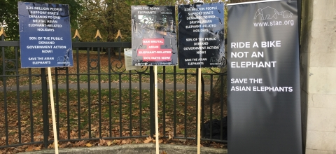 Signs outside the wildlife conference promote saving Asian elephants.