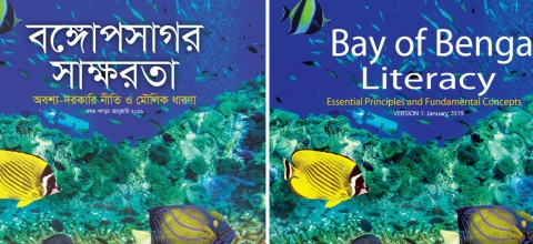 Titles in English and Bangla: Bay of Bengal Literacy - on background of fish swimming