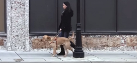 A young woman walks her guide dog down a sidewalk
