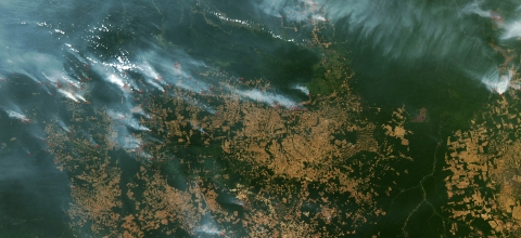 Satellite view of a forest with smoke in parts of it
