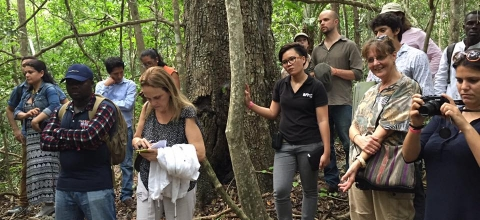 EJN Fellows receive a briefing on new forestry management projects. (credit: Internews)